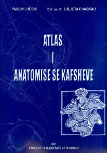 Atlas i anatomise