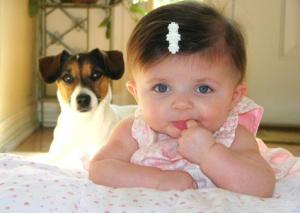 femija dhe qeni