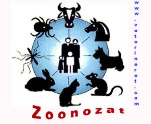 Zoonozat