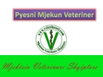 pyesni veterinerin