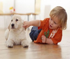 todler dhe qen