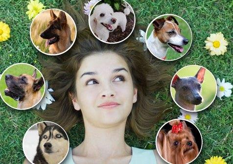 Në këtë artikull do të sjellim disa prej ushqimeve për njerëz që shkaktojnë probleme tek qeni. JU KESHILLOJME QE NE ATO RASTE KUR QENI JUAJ KA KONSUMUAR NJE APO DISA PREJ USHQIMEVE QE DO TE SHIHNI NE KETO FOTO, KONTAKTONI MENJEHERE ME MJEKUN VETERINER PER TE MARRE NDIHMEN E DUHUR NE MOMENTIN E DUHUR!