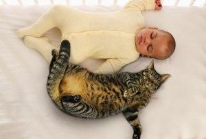 mace dhe bebe