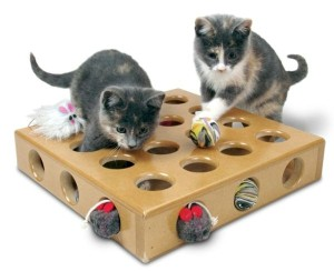 macet luajne bashke