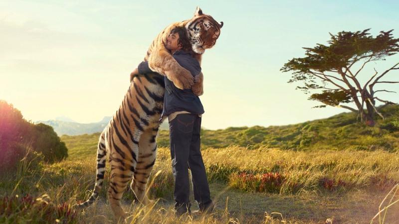 tiger dhe njeri