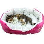 artitet mace ne krevat