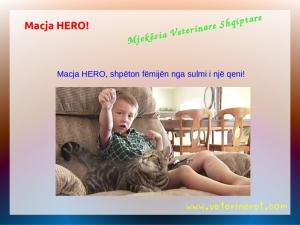 macja hero