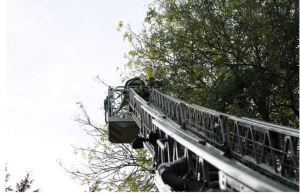 ngjitja e veshtire ne pemen e larte