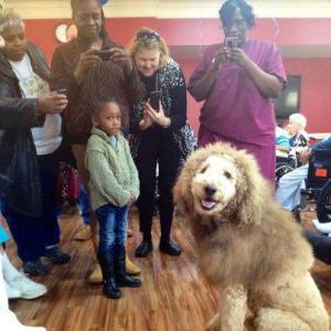 qeni luani3