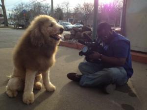 qeni luani5