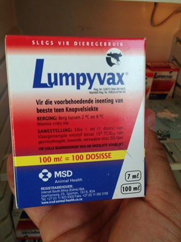 LSD vaksinim nga koleget ne Maqedoni